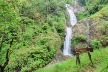 View Of Silky Waterfall Flowing On Cliff Rocks Around With Green Forest Background, Mae Pan Waterfall, Doi Inthanon National Park, Chiang Mai, Northern Of Thailand.