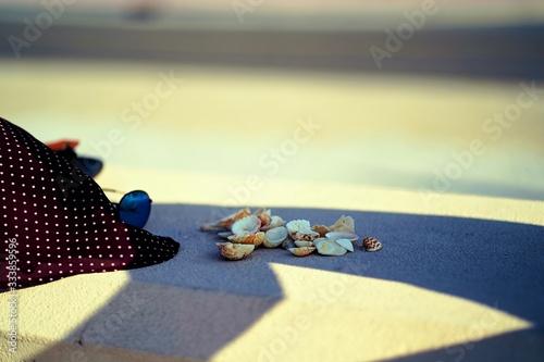 Photo seashells at beach near Burj Al Arab(dubai,UAE)