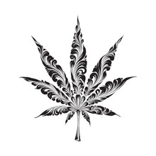 Cannabis Leaf Abstract Illustration Isolated On White. Hand Drawn Design Element. Medical Cannabis Illustration.