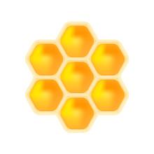 Honey Bee Isolated On White Ba...