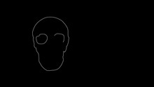 Self Drawing Bones, Human Head Scull. Animation Sketch. Copy Space. Black White Background.
