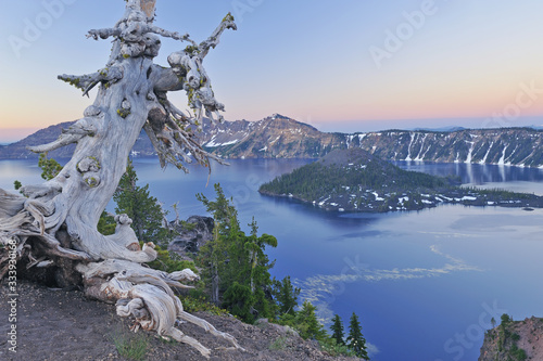 Fotografie, Obraz Landscape at dawn of Crater Lake National Park with conifers, Wizard Island, and