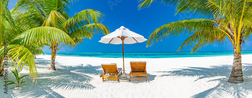 Tropical beach background as summer landscape with lounge chairs and palm trees and calm sea for beach banner - 333971988