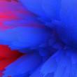 Leinwandbild Motiv Abstract 3D explosion illustratoin. Colorful graphic design. Hight resolution  creative  background.