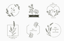 Black Flower Logo Collection With Leaves,geometric.Vector Illustration For Icon,logo,sticker,printable And Tattoo