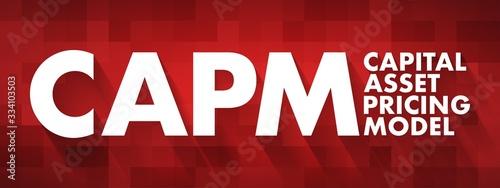 CAPM - Capital Asset Pricing Model acronym, business concept background Canvas Print