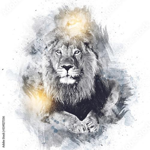 lion art illustration drawing grunge vintage Wall mural