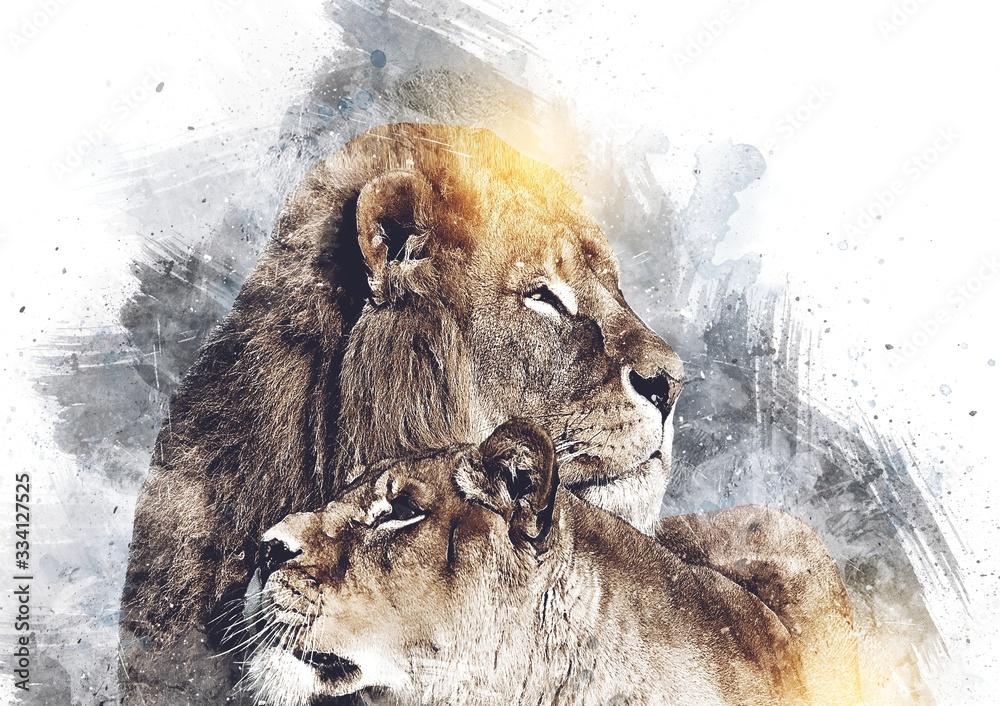 Fototapeta lion art illustration drawing grunge vintage