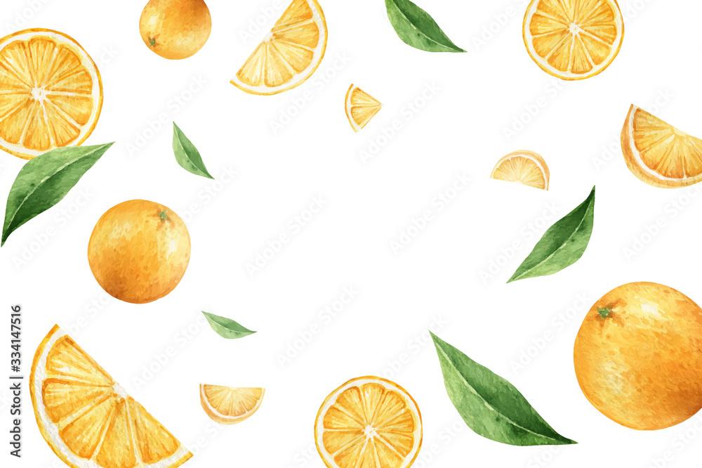 Fototapeta Watercolor vector hand painted card from orange fruits.
