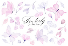 Watercolor Hand Drawn Tenderly...