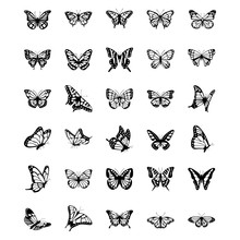 Butterfly Solid Vector Icons ...