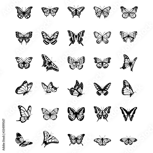 Butterfly Solid Vector Icons Set Tablou Canvas