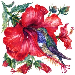 Panel Szklany Do sypialni Watercolor Hibiscus and Hummingbird Composition