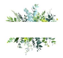 Horizontal Botanical Vector De...