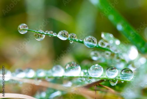 Obraz Water drop - fototapety do salonu