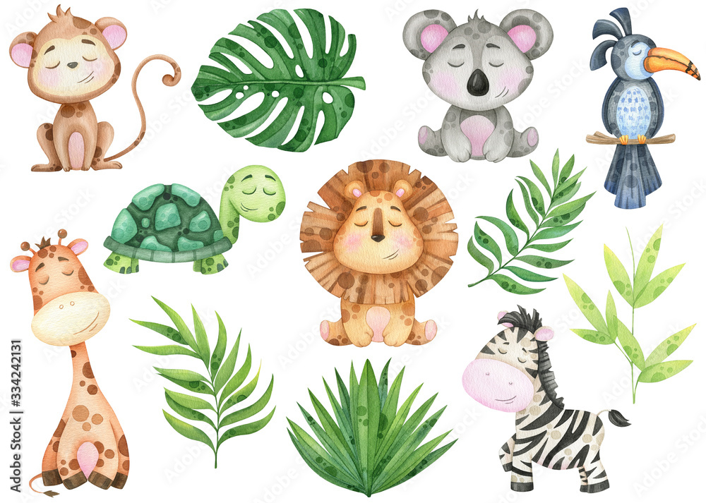 Fototapeta big watercolor set of tropical animals and leaves on white background