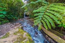 Ho'olawa Stream Flows Over Cav...