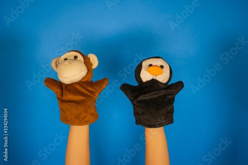 Fotografia Soft puppet toys on hands on blue background