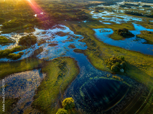 Fototapeta Pantanal photographed in Corumba, Mato Grosso do Sul