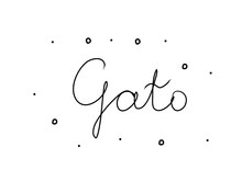 Gato Phrase Handwritten With A...