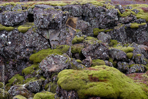 Fototapeta The Tektonic plates split in Iceland on a cloudy and drizzly day