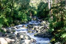 Beautiful River In Panama