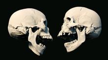 Human Skull On Rich Colors A B...