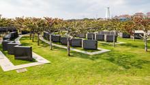 Naha, Okinawa/Japan - Circa 2014: The Peace Memorial Park In Okinawa.