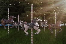 Wild Horses, Set Of Carousel H...