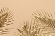Leinwanddruck Bild - Gold colored tropical palm leaves on beige background flat lay top view copy space. Creative summer background with tropical leaves. Golden background, minimal nature concept