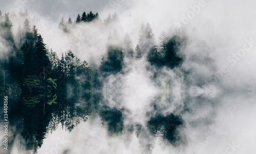Obraz na plátně Abstract image with foggy forest that looks like sound-waves.