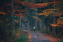 Runner In Orange Autumn Nature
