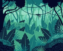Colored Tropical Rainforest Jungle Background Vector Graphic Illustration. Cartoon Natural Forest Landscape With Dense Plant Leaves Foliage Exotic Subtropical Climate Backdrop