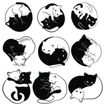 Set Of  Yin Yang Cats. Collection Of Simple And Cute Black And White Cats In The Shape Of Yin Yang. Vector Illustration For The Children. Tattoo.