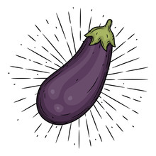 Eggplant. Hand Drawn Vector Il...