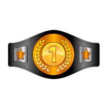 Champion Belt Box Award Sport Icon Flat Web Sign Symbol Logo Label