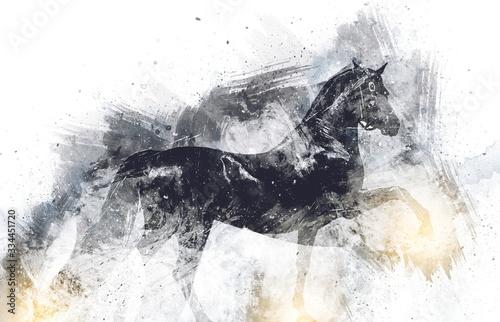 Fototapeta Colorful horse art illustration grunge painting obraz