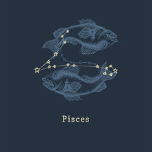 Zodiac Constellation Of Pisces In Engraving Style. Vector Retro Graphic Illustration Of Astrological Sign Fishes.