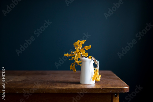 Fototapeta Withered tulips in a white jug on a wooden table opposite a dark blue wall