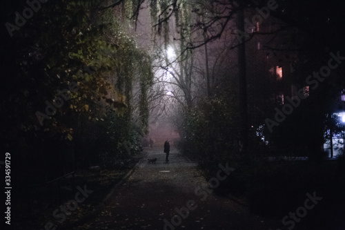 Empty foggy spooky alley street during night in city Wallpaper Mural