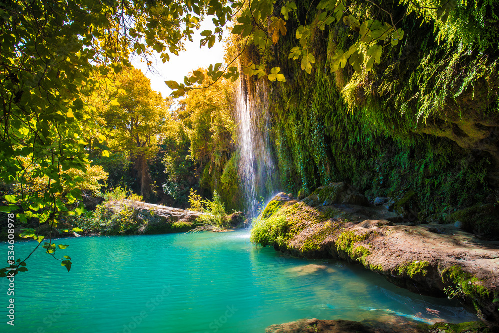 Fototapeta waterfall in the forest