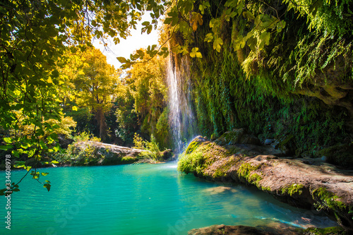 waterfall in the forest - 334608978