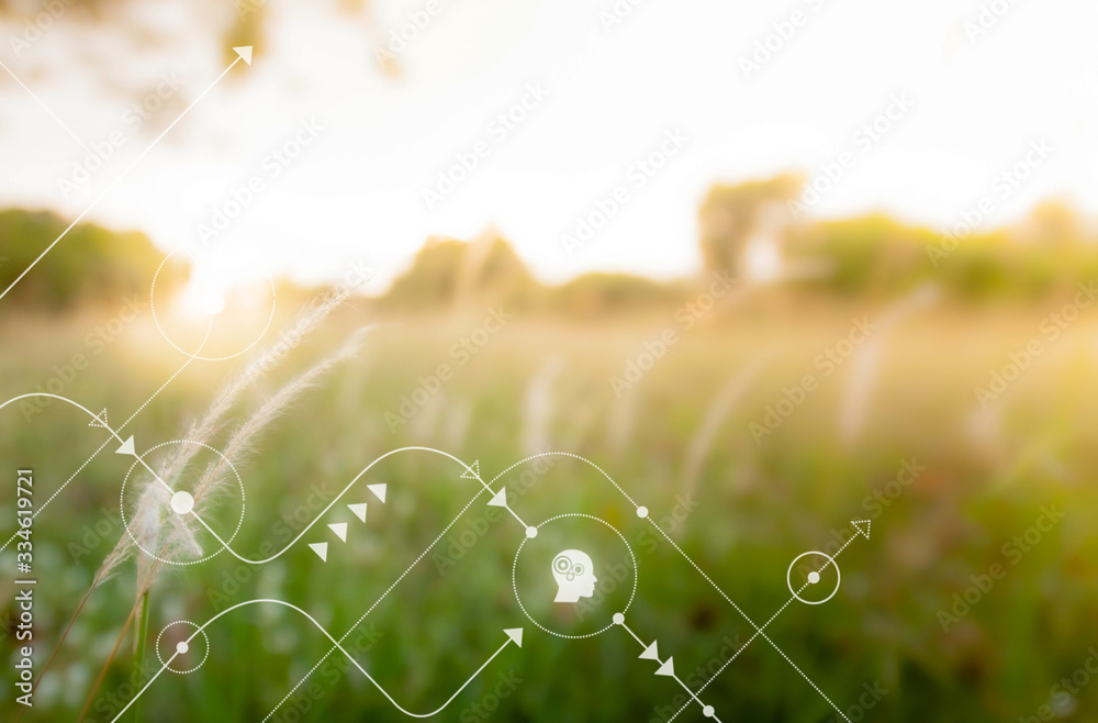 Fototapeta Smart technology with Internet of things futuristic agriculture concept. Analysis report with one finger click on digital screen. free space for text.  Blurred gentle artistic nature  background