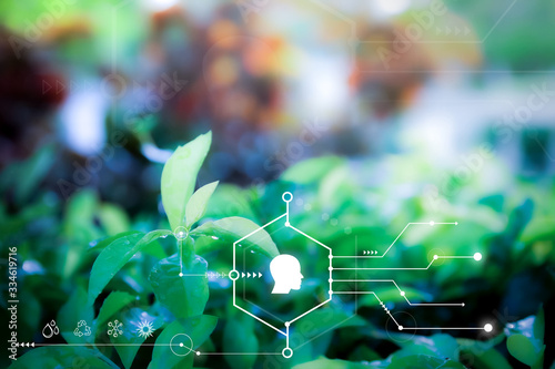 Obraz Smart technology with Internet of things futuristic agriculture concept. Analysis report with one finger click on digital screen. free space for text.  Blurred gentle artistic nature  background - fototapety do salonu