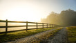 Foggy Country Road at Sunrise