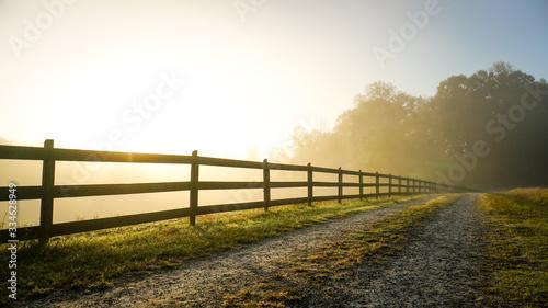 Fotografija Foggy Country Road at Sunrise