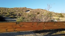 Fence At Ranch In The Californ...