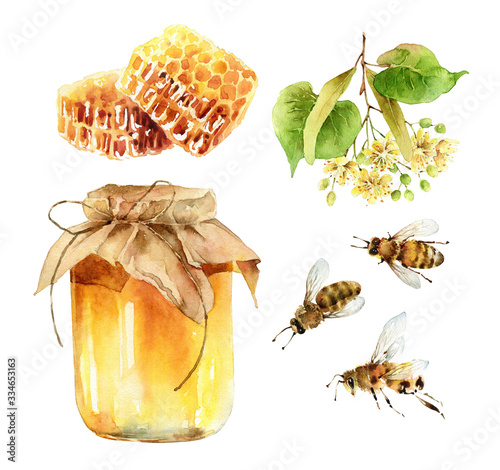 Watercolor honey set of design elements on white background Canvas Print