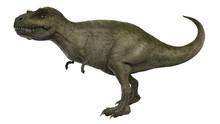 3d Rendered T-rex Tyrannosauru...