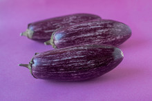 Striped, Purple Aubergine Cultivars